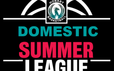 HPBA Summer Domestic League